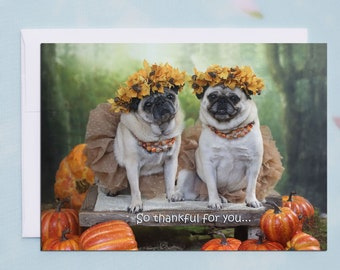 Thanksgiving Card Funny - ALL NEW - So Thankful for YOU - Funny Pug Card by Pugs and Kisses - 5x7