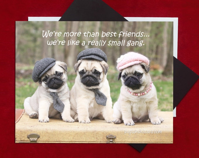 NEW! Pug Magnet - We're More Than Friends - 5 x 4 Pug magnet - by Pugs and Kisses