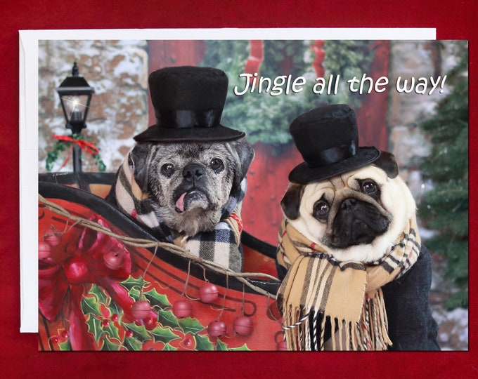 NEW! Jingle All The Way - Holiday Card - Pug Holiday Card - 5x7
