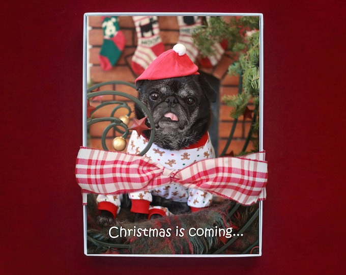 BOXED HOLIDAY Cards - Christmas is Coming - pug christmas cards - 5x7