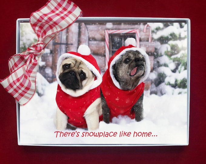 NEW! BOXED CHRISTMAS Cards - There's Snowplace Like Home - Pug Christmas Cards - 5x7