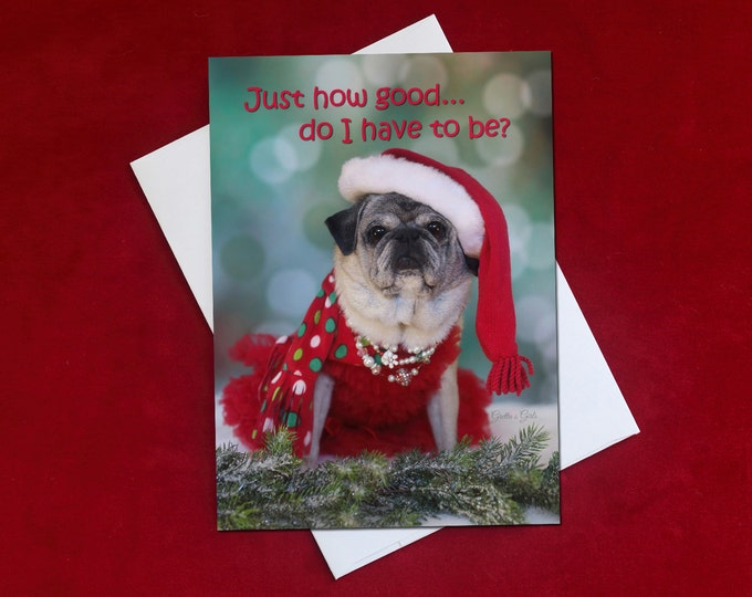 Funny Holiday Card - Just How Good - Pug Holiday Card -  5x7