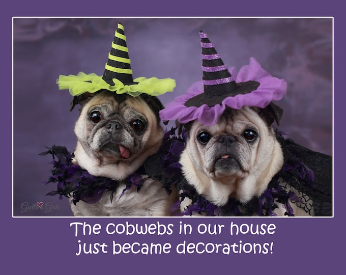 BOX of 10 Halloween Cards - Pug Card - Cute Card - 5x7