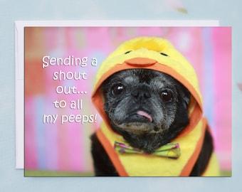 Funny Easter Card - Pug Card-  My Peeps - 5x7