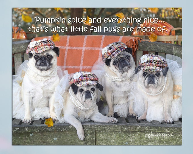 Pug Wall Art - Pumpkin Spice - Pug Art Print - Pug Gift - Pug Gift by Pugs and Kisses 5x7 8x10 11x14 16x20