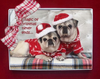 BOXED Christmas Cards - The Magic of Christmas - pug christmas cards - 5x7 by Pugs and Kisses