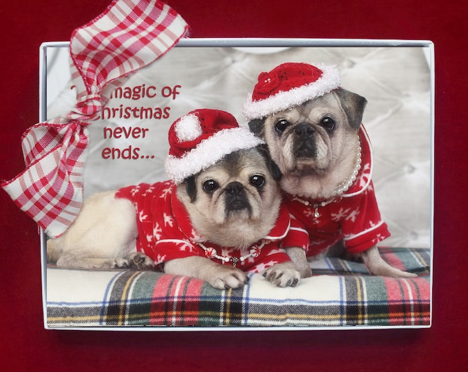 ALL NEW - BOXED Christmas Cards - The Magic of Christmas - pug christmas cards - 5x7 by Pugs and Kisses