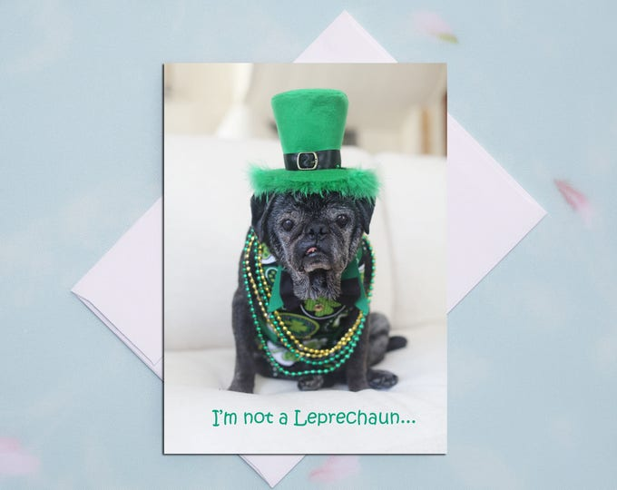 I'm Not  A Leprechaun - St. Patrick's Day Pug Card by Pugs and Kisses
