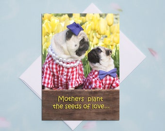 NEW!!! Mother's Day Card - Mothers Plant the Seeds of Love - 5x7 Pug Card Pugs and Kisses