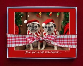 BOXED CHRISTMAS CARDS - Dear Santa We Can Explain - pug christmas cards - 5x7 -