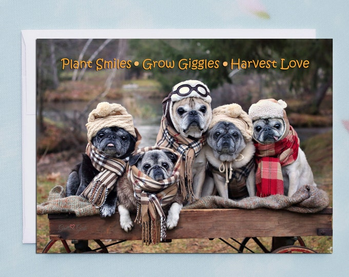 Funny Thanksgiving Card - Plant Smiles Grow Giggles  - 5x7
