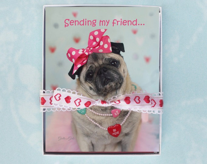 10 PACK Note cards - Sending My Friend - Funny Valentines Cards - Valentine's note card- 4x5