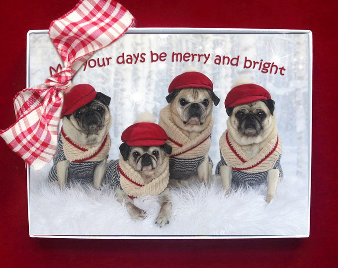 ALL NEW - BOXED Holiday Cards - May Your Days Be Merry and Bright - pug christmas cards - 5x7 by Pugs and Kisses