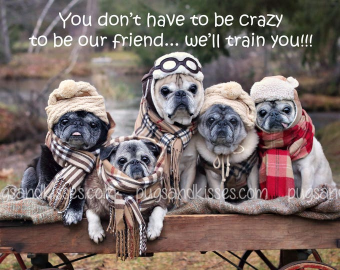 Pug Wall Art - Crazy Friends - Pug Art Print - Pug Gift - Pug Gift by Pugs and Kisses 5x7 8x10 11x14 16x20
