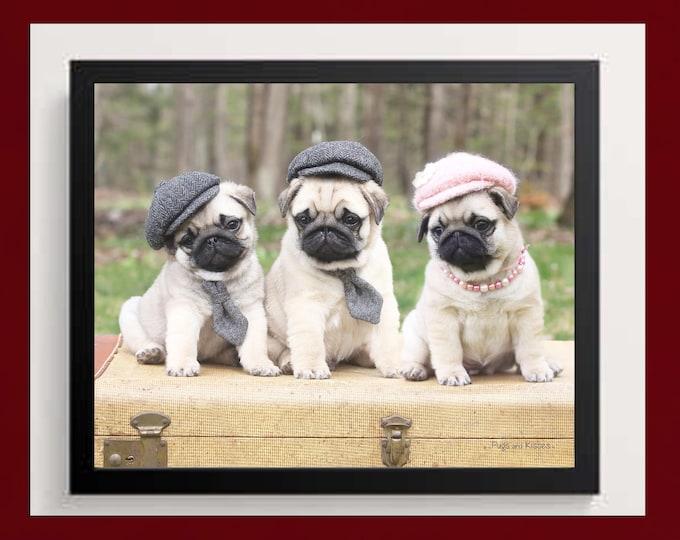 Pug Wall Art - Hats and Ties - Pug Art Print - Pug Gift - by Pugs and Kisses 5x7 8x10 11x14 16x20