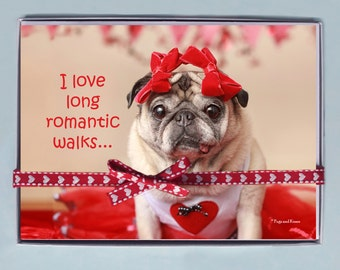 BOX OF 10 5X7 CARDS- Romantic Walks - Funny Valentines Day Card