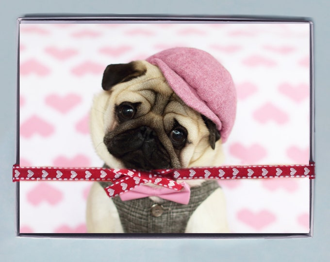 BOX OF 10 5X7 CARDS- Will You Be Mine? - Funny Valentines Day Card