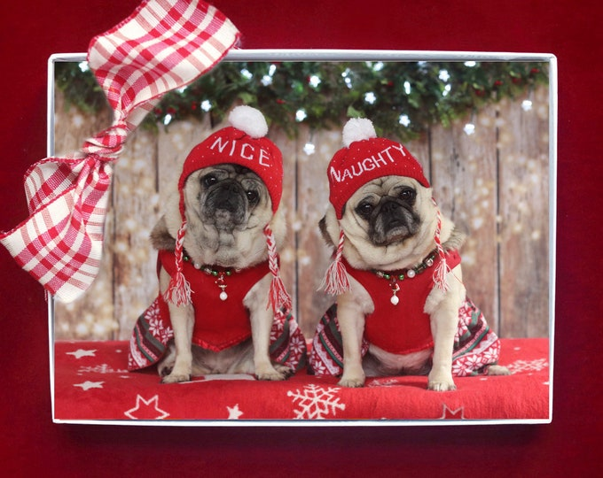 ALL NEW Boxed CHRISTMAS Cards - Naughty or Nice - Pug Holiday Cards - 5x7