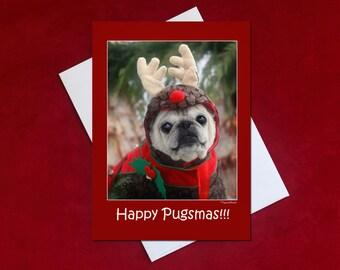 Funny Christmas Card - Happy Pugsmas - Pug Christmas Card - 5x7 -