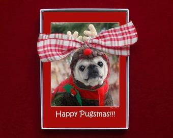 BOXED CHRISTMAS CARDS - Happy Pugsmas - pug christmas cards - 5x7 -
