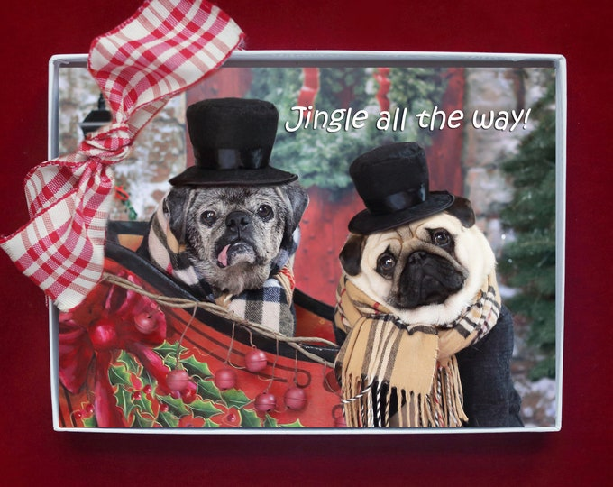 NEW! BOXED HOLIDAY Cards - Jingle All The Way - Pug Happy Holiday Cards - 5x7