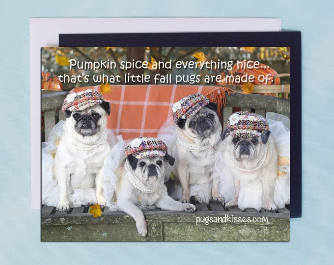 Pug Magnet - Pumpkin Spice - 5x 4 Pug magnet by Pugs and Kisses