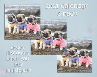 PACK of 3 - 2021 Wall CALENDAR by Pugs and Kisses