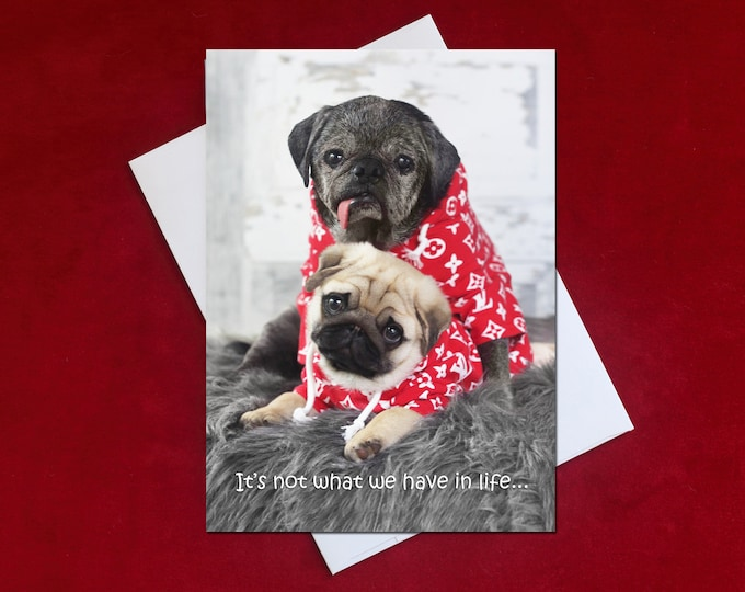 NEW! Birthday Card - It's Not What We Have in Life - 5x7 - Pug Birthday Cards - by Pugs and Kisses