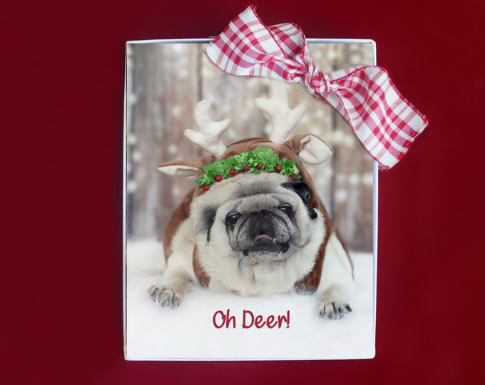 ALL NEW - HOLIDAY Note Cards - Oh Deer - 10 Pug Note Cards - 4x5