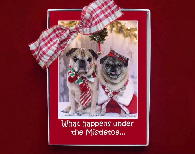 BOXED CHRISTMAS CARDS - What Happens Under the Mistletoe - 5x7 - pug christmas cards