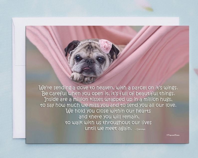 PET SYMPATHY CARD We're Sending A Dove To Heaven Pug image 0