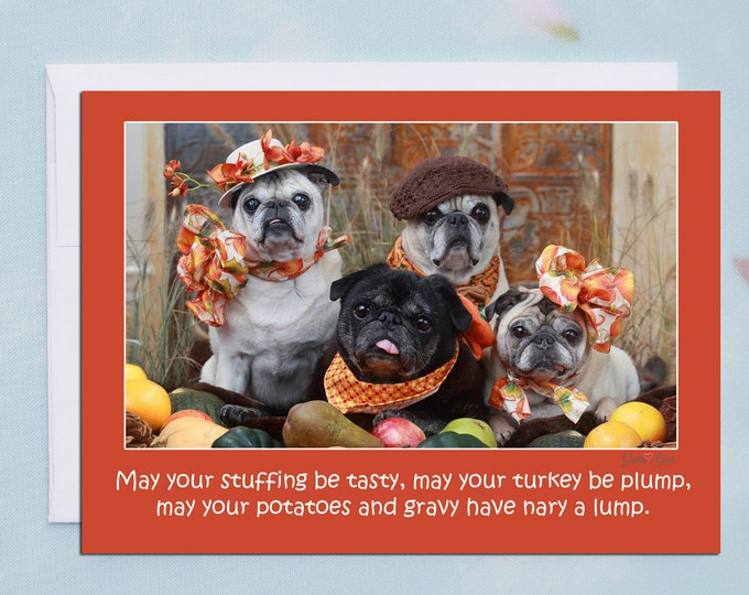 THANKSGIVING Card - May Your Stuffing Be Tasty - Funny Pug Card -5x7