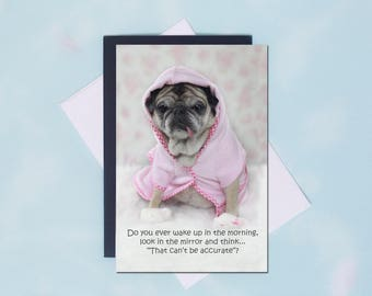 Pug Magnet SALE - That Can't Be Accurate - 4x6 Pug magnet - by Pugs and Kisses
