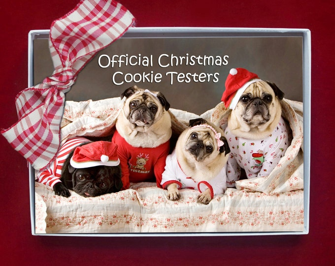 BOXED CHRISTMAS CARDS - Official Christmas Cookie Testers - pug christmas cards - 5x7