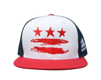 e0c87ef3573 Washington DC The District Grey Fitted Flat Brim