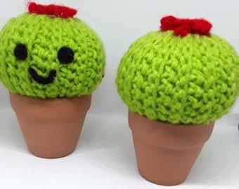 Mini Crochet Cactus in a Pot