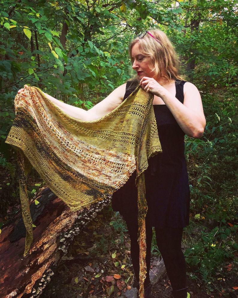 Knitting pattern: instant download PDF. Quiet Spot Shawl image 0