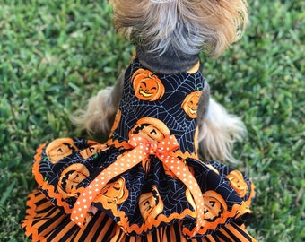 halloween pumpkin dog dress customizable to your pets measurements size xxs xs and small