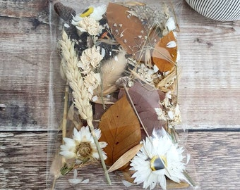 Flower Craft Pack - Autumn colour - Mixed dried flowers