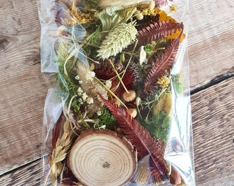 Flower Craft Pack - Forest - Mixed dried flowers