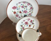 Royal Worcester Astley Pattern, Cup, Saucer, 6 quot 8 quot Side Plates. (Dr. Wall - Reproduced.) Set no. 2.