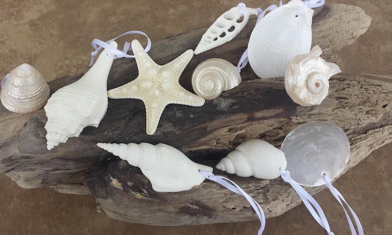 Coastal Christmas Ornament Coastal Ornament Beach Christmas Ornament Shell Ornament Shell and Starfish Ornaments Beach Decor