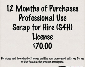 12 Month Professional Use - Scrap for Hire - S4H - License