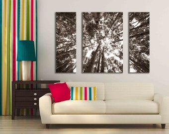 Three large sepia aspen birch tree wall art multi panel canvas print brown modern forest nature home decor rustic huge photograph mountain