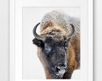 Bison Print, Buffalo Wall Art, Nursery Animal Print, Snow Winter Decor, American Bison Photo, Modern Decor, Boys Room Decor, Printable Art