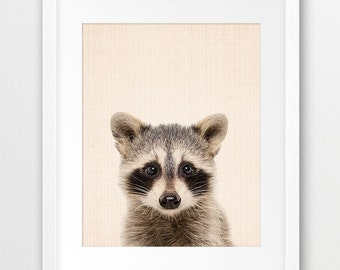 Raccoon Print, Woodlands Nursery Wall Art, Baby Raccoon Photography, Forest Animal Decor, Baby Animal Print, Kids Room Decor, Printable Art