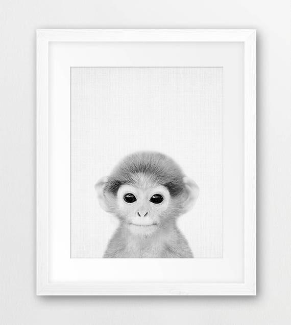 Monkey Print Safari Animals Decor Black White Nursery Animal  ea74e7845610