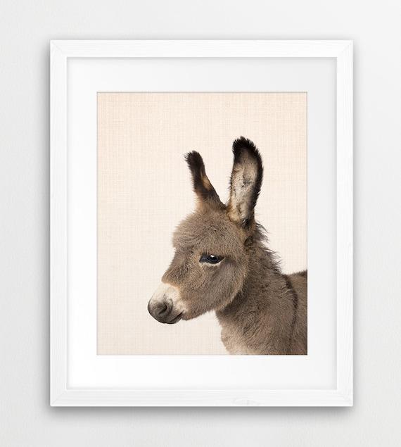 Farm Animal Painting Donkey Painting Donkey Print Donkey Study Nursery Decor P320