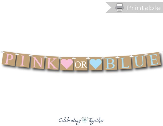 Pink or Blue Banner Gender Reveal Bunting Girl Boy Baby Shower Mum to be party