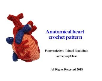 Anatomical Heart Crochet Pattern